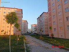 erzurum yıldızkent osmangazi mahallesi - Google'da Ara