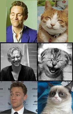 Hiddles is a kitty now. Much cuter than a kitty actually. I don't like kitties much. They make me sneeze. Hiddles doesn't make me sneeze.