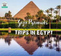 Cairo Day Trip from Hurghada A private full-day tour from Hurghada to Cairo. Enjoy a safe flight to the legendary Cairo to see its unforgettable landmarks.  Reservation@tripsinegypt.com Whatsapp:+201069408877 #TripsInEgypt #EgyptDayTours #CairoDayTours #HurghadaExcursions #EgyptTours  #EgyptTrips #CairoTours #CairoTrips #HurghadaToCairo#HurghadaTours #HurghadaTrips  #Travels #Holidays #Vacations #thisisegypt #GizaPyramids