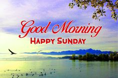 Happy Sunday Messages, Happy Sunday Images, Good Morning Sunday Images, Good Morning Wishes, Image Hd, Neon Signs, Nature, Buen Dia, Messages