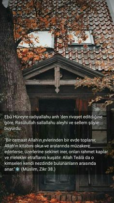 Istanbul, Islam, Literature, Letters, Crafts, Quotes, Literatura, Manualidades, Letter