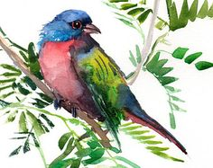 Painted Bunting, Original watercolor painting, 12 X 9 in, colorful bird art, blue green red bird painting Watercolor Bird, Watercolor Animals, Watercolor Paintings, Painted Bunting, Decoupage, Bird Drawings, Colorful Paintings, Tribal Art, Bird Art