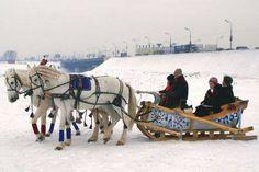 Troika. photo by Aleksandr Anastasin. (yes, there are 3 horses)
