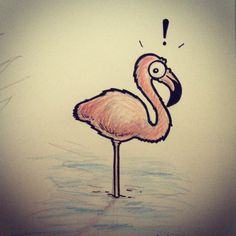 What ? - by raphmau.com Flamingo, Animals, Drawings, Flamingo Bird, Animales, Animaux, Flamingos, Animal, Animais