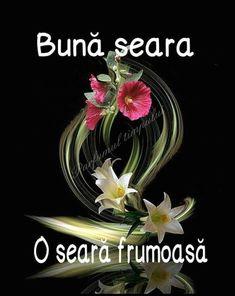 Good Night, Plants, Bom Dia, Nighty Night, Have A Good Night, Flora, Plant, Planting