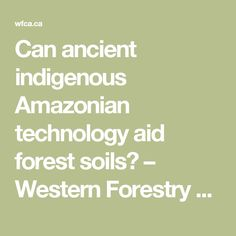 Can ancient indigenous Amazonian technology aid forest soils? – Western Forestry Contractors' Association