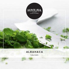 """""""#CombinacionesMixtura La albahaca es el perfecto completo para las salsas. #mixtura #mixturagourmet #tips #albahaca #herbs"""" Photo taken by @mixturagourmet on Instagram, pinned via the InstaPin iOS App! http://www.instapinapp.com (11/06/2014)"""
