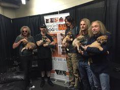 Banda Judas Priest a promover campanha de adoção de animais abandonados