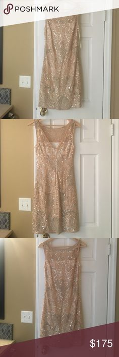Dress Sparkly, form fitting, dressy, wore it once as a matron of honor for my sisters wedding Aidan Mattox Dresses Prom