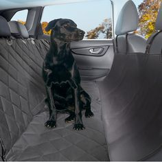 GRAND SUPER SALE - Pet Seat Cover with Seat Anchors - Water and Weatherproof Non-slip Rubber Backing with Bonus Pair of Best Harness and Seat Belt for Cars, Trucks, Suv's and Vehicles