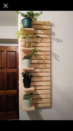 Plant Shelves, Entryway, Shelf, Base, Plants, Ideas, Carpentry, Green Walls, Gardens