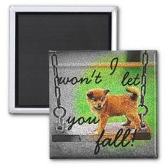 I won't let you fall/dog magnet