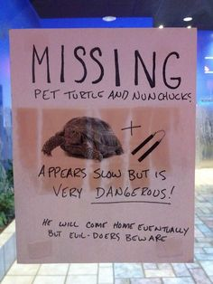 funny turtle with numchucks