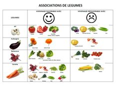 Leaf vegetables commonly found in salads food about - Association de legumes au jardin potager ...