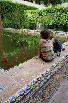 Sizzling Seville