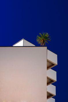 Végétaville - Eric Forey