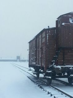 The historical train car at the unloading and selecrion ramp at the Auschwitz II-Birkenau. In the distance the main gate of the camp.