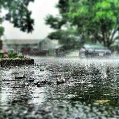 Rain by Shawn Hikichi (Dublin Ninja), Rainy Day Photography, Rain Photography, Walking In The Rain, Walking In Nature, Smell Of Rain, I Love Rain, Rain Days, Under The Rain, Ap Studio Art