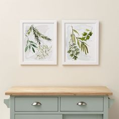 Crate & Barrel Set of 2 Culinary Herbs Prints ($200) ❤ liked on Polyvore featuring home, home decor, wall art, crate and barrel, green wall art, watercolor wall art, green home decor and garden wall art