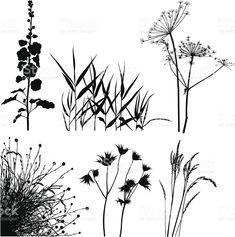 Meadow Pflanzen Silhouetten Lizenzfreies meadow pflanzen silhouetten stock vektor art und mehr bilder von blatt