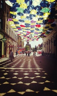 oanabvb: Timisoara - by oanabvb Oh The Places You'll Go, Places To Visit, Visit Romania, Beautiful World, Street Art, Country, City, Photography, Travel