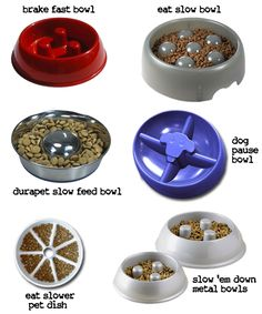 """""""slow down"""" bowls (to keep your dogs from eating too fast and potentially making themselves sick)"""