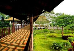 Golden Pine Resort and Spa Outdoor Pool, Outdoor Decor, Chiang Rai, Spa Offers, Resort Spa, 4 Star Hotels, Asia Travel, Pine, Souvenir