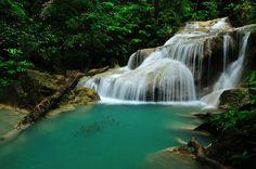 The Fishes - Location : Erawan waterfall Kanchanaburi province, Thailand