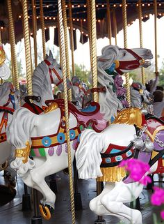 Ride on Cinderella's Carousel Horse (It's the only one with a gold ribbon on its tail!) I need to do this!