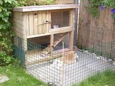 Taking Care Of Rabbits Jack Rabbit, Bunny Rabbit, Rabbit Cages Outdoor, Rabbit Enclosure, Meat Rabbits, Bunny Hutch, Rabbit Life, Bunny Cages, Animal Room
