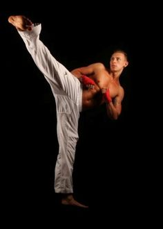 Will need martial arts in senior pictures. Maybe a picture of some kind of kick?