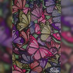 ✨✨Muitas borboletas✨✨ ✨✨Many butterflies✨✨ #divasdasartes #livroantiinsônia #thecantsleepcolouringbook #colorindolivrostop #prazeremcolorir…