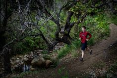 Trail Running Photography: Neal Barry on the Jesusita Trail, Santa Barbara Running Images, Primal Movement, Cross Country Running, Crossfit, Move Your Body, Creative Photos, Trail Running, Santa Barbara, Savannah Chat