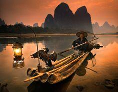 Cormorant fishing near Guilin | China 2014 | Pinterest