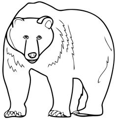 Coloring Pages Corduroy The Bear Printable Sheet Anbu