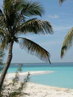 Abaco Bahamas ~