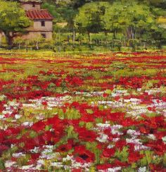 Midday Poppies, Tuscany by Carol Zimmermann,  Oil on Board, 15cmx14.5cm THIS PAINTING IS SOLD