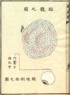 Kaishihen (Dissection Notes), 1772 - illustration med japonaise