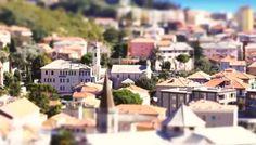 TL I Little Liguria