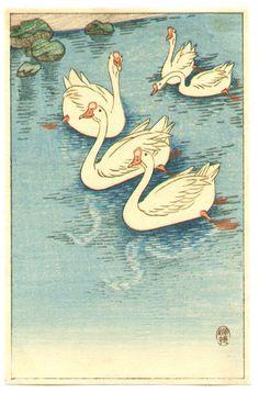 Ohara Koson: Swimming White Geese - Ca. 1930s.