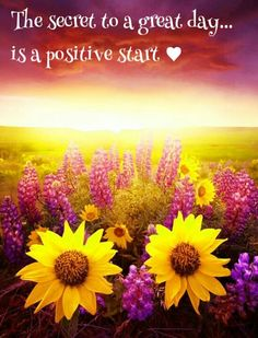 ♥ Good morning ♥...:) Get up no matter what and pray and be positive and watch what happens.