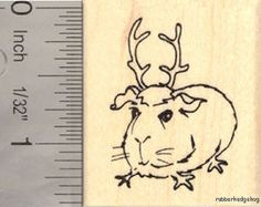 Small Christmas Guinea Pig in Reindeer Antlers Rubber Stamp D15008 WM