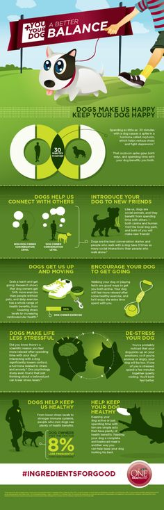 I'm going to end the review with a cool infographic from Purina about the healthy balance you and your dog can share.