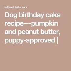 security soft mesh dog harness on dog birthday cake recipe pumpkin