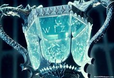 TRIWIZARD Cup (book4)