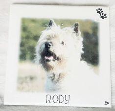 Deco-bord: Hond Rakker / Rody | Karin's Deco Atelier