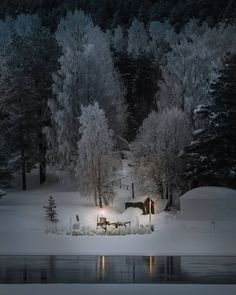 So lets go sweeties, pack our bags and drive up North 💙❄️ I know a place we could hide in ❄️💙 Hike to a cabin with me. Listen to frosty… I Know A Place, Lapland Finland, Beautiful Dream, Beautiful Things, Belleza Natural, Letting Go, Hiking, Cabin, Let It Be