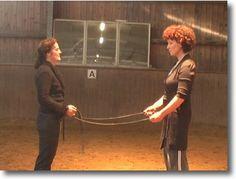 Tipps und Ideen rund ums Pferd: Reiten, Ausbildung, Unterricht, pferdegerechter Umgang, Pferdehaltung und vieles mehr.