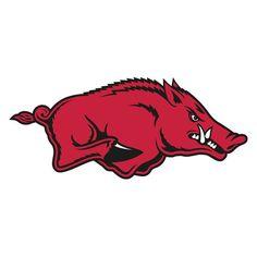 NCAA Team Logo Wall Decal - 61-61