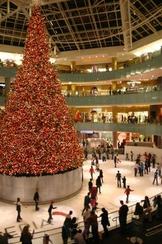 Dallas Galleria a place to shop till you drop! It is awesome!